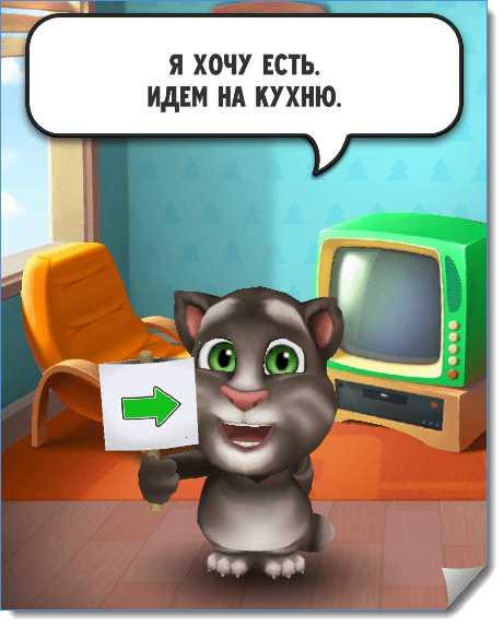 Реакция кота