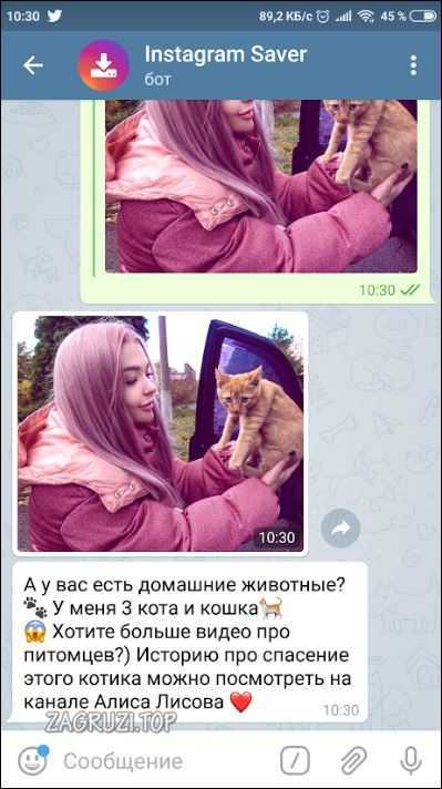 Текст и изображение
