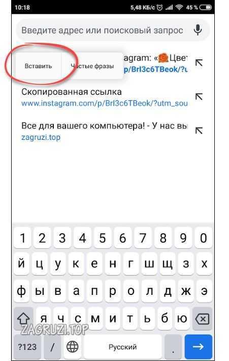 Вставляем ссылку в браузер