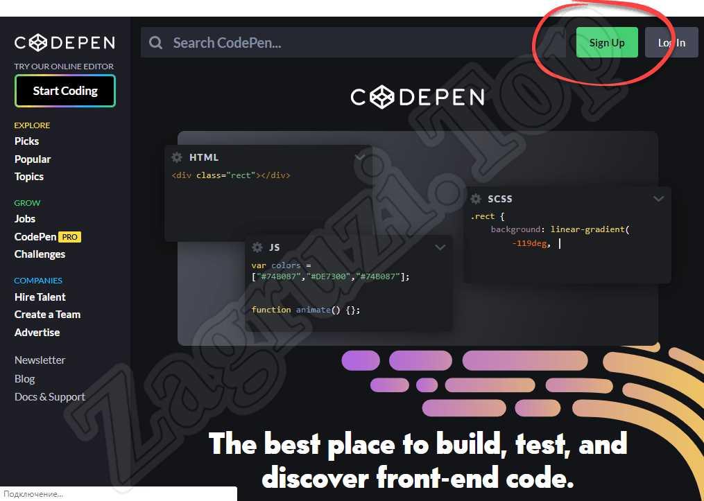 Авторизация на Codepen