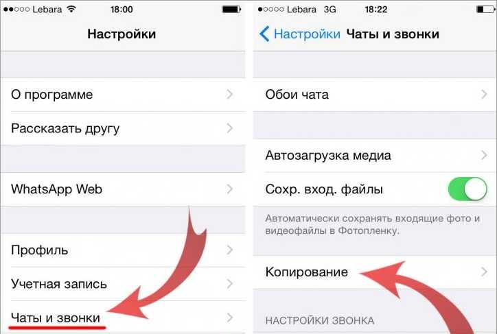 Копирование истории чатов на iOS