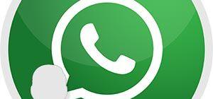 Статус WhatsApp