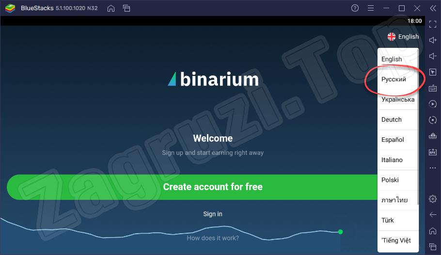 Выбор русского языка при запуске Binarium на компьютере